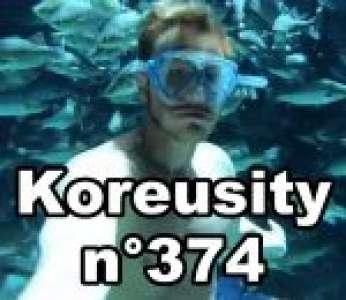 Bon confinement avec Koreusity n°374 un zap de 113 vidéos insolites