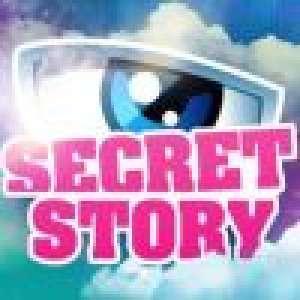 Secret Story : Une candidate maman solo, son ex recasé présente sa belle brune !