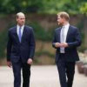 Prince Harry et William en froid durant l'inauguration de la statue de leur mère ?