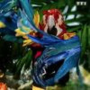 Mask Singer : Les Perroquets démasqués, découvrez qui se cachait derrière les masques