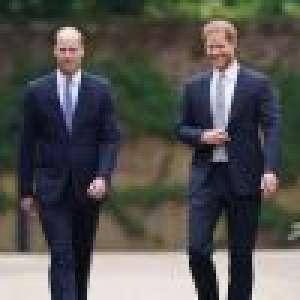 Harry et William : Chaleureuses retrouvailles au nom de Diana, ils dévoilent sa statue à Kensington
