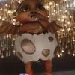 Mask Singer, qui se cache derrière les 12 masques ? Nos pronostics