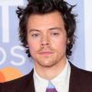 Harry Styles en robe pour Vogue : lynché, Hollywood prend sa défense