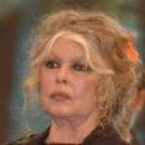 Brigitte Bardot : Le suicide comme