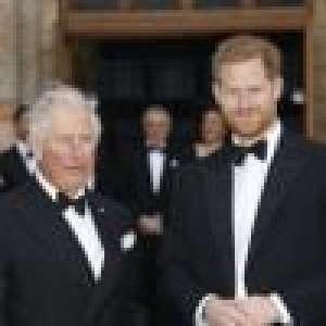Le prince Harry charge encore son père Charles :