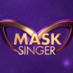 Mask Singer : Un indice a induit le jury en erreur, une star masquée s'explique