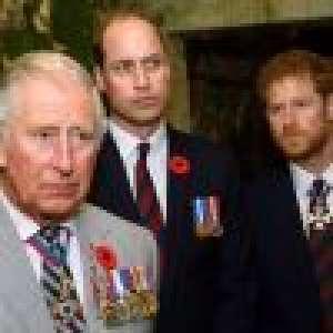 Prince Harry renoue avec la famille royale pour un projet émouvant