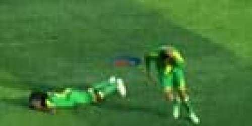 Surréaliste: des abeilles tueuses sèment la terreur lors d'un match de football en Tanzanie