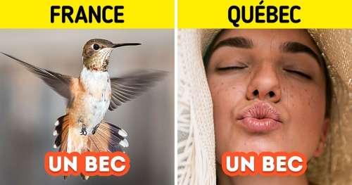 16 Expressions québécoises difficilement compréhensibles par les Français