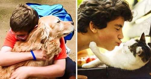 En Colombie, une loi a été proposée pour que les établissements scolaires sensibilisent les enfants à la protection animale