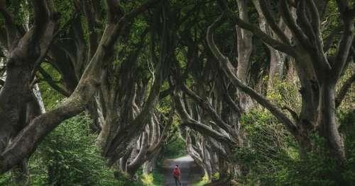 Un photographe de voyage capture la beauté de la nature lors d'expéditions