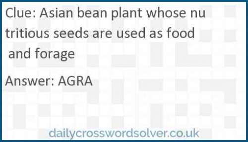 Asian bean plant whose nutritious seeds are used as food and forage crossword answer