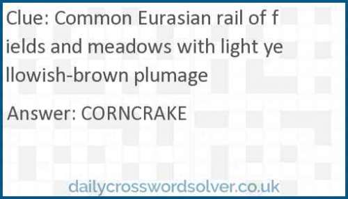 Common Eurasian rail of fields and meadows with light yellowish-brown plumage crossword answer