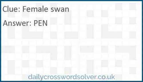 Female swan crossword answer