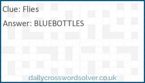 Flies crossword answer