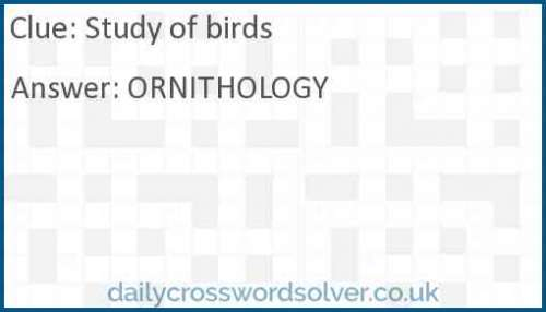 Study of birds crossword answer