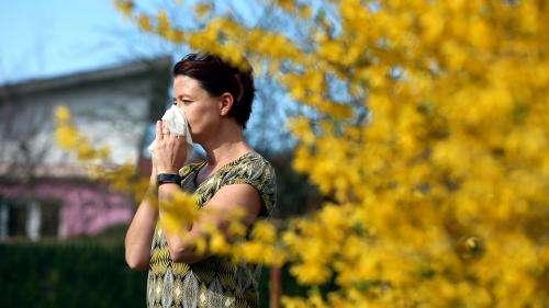 Allergies au pollen : 11 départements déjà en alerte