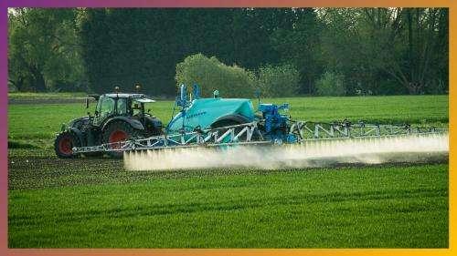Les idées claires : Le glyphosate est-il dangereux pour la santé ?