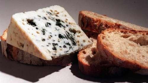 Alimentation : le roquefort, un patrimoine à protéger