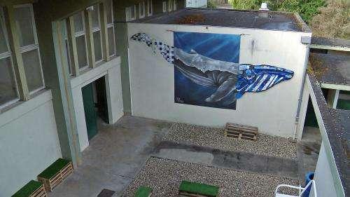La piscine désaffectée de Cognac reprend vie grâce à un collectif de street artistes