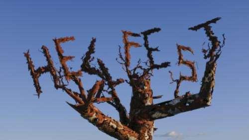 Privé de plein-air, le Hellfest fête ses quinze ans avec une édition en ligne aux petits oignons du 18 au 21 juin