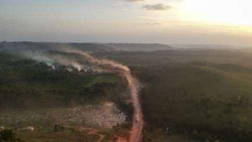 Brésil : la déforestation de l'Amazonie a connu un niveau record au premier semestre 2020