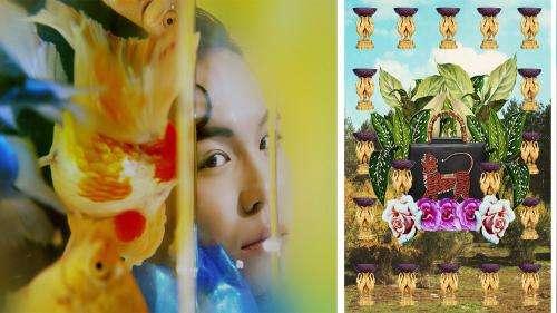 Chiron Duong, Lucie Khahoutian et Gabriel Dia lauréats du prix Picto de la Photographie de Mode