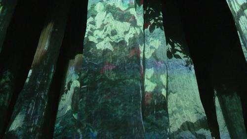 Voyage sensoriel dans une forêt virtuelle qui a poussé dans la plus vieille église d'Angers