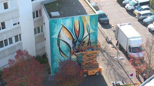 Meurthe-et-Moselle : le street art s'invite à Vandœuvre-lès-Nancy grâce à l'arbre urbain de Romain Froquet