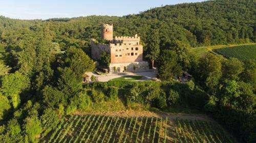 Patrimoine : 15 millions d'euros accordés pour la restauration de 101 sites