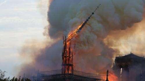 Notre-Dame de Paris : des chênes ont été sélectionnés pour la reconstruction de la flèche