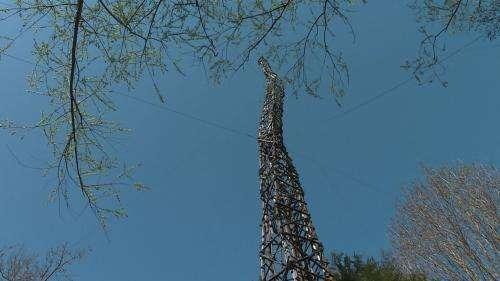 Dans l'Yonne, la Tour Eiffel en bois de la Fabuloserie cherche des fonds pour sa restauration