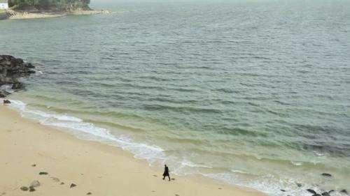 Bretagne : sur la trace de la cité d'Ys à Douarnenez