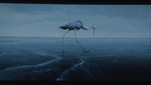 La Ciotat donne rendez-vous aux amoureux du cinéma avec la 38e édition du Festival du premier film francophone
