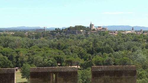 Dans le jardin de l'abbaye Saint-André dans le Gard