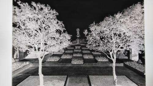 L'histoire de la photographie racontée au musée des Arts Décoratifs à Paris, de l'outil culturel à l'œuvre d'art