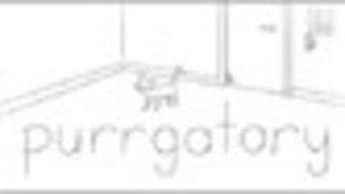 Purrgatory