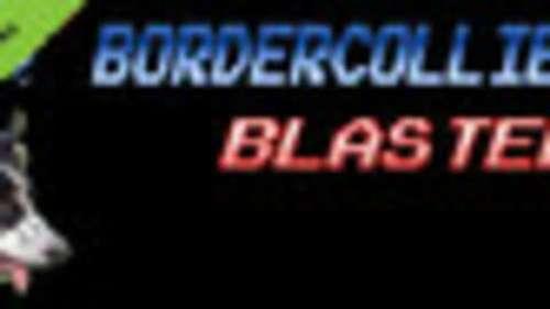 BorderCollie Blaster Demo