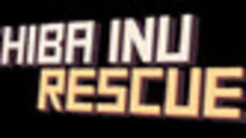 Shiba Inu Rescue