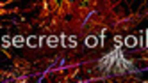 Secrets Of Soil