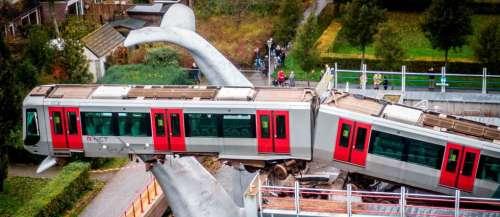 Pays-Bas: un métro sauvé du crash par… une queue de baleine