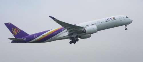 La compagnie Thai Airways propose désormais un pèlerinage dans le ciel