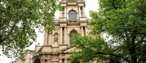 Paris: la mystérieuse multiplication des ormes