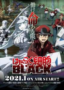 Le manga Les Brigades Immunitaires Black adapté en anime