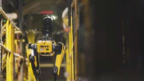 L'armée française s'est entraînée avec le chien-robot de Boston Dynamics
