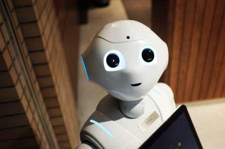 Ce robot tente de rassurer les humains en copiant leur expression faciale