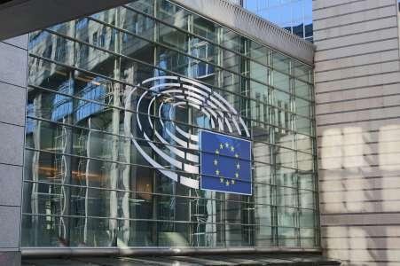 Puces: voici comment l'Europe veut lutter contre la pénurie