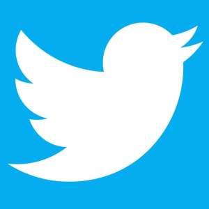 Twitter: ces faux comptes ont trompé les médias et influencé les élections