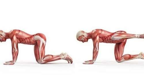 10 exercices pour soulager les douleurs de la colonne vertébrale lorsque l'on reste assis trop longtemps