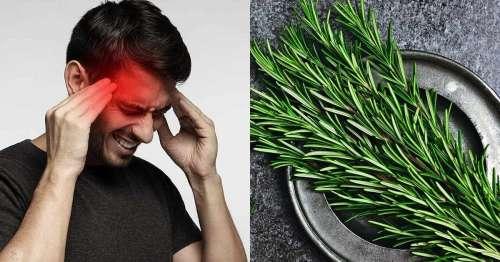 Comment utiliser le romarin pour soulager les maux de tête et migraines ?